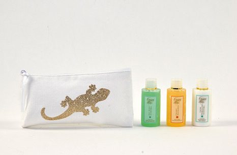 SET-DE-REGALO-LIZARD-POCKET